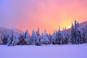 Sunrise enlightens sky, mountain and trees standing in snowdrifts covered by frozen snow with yellow shine. Winter landscape for leaflets.